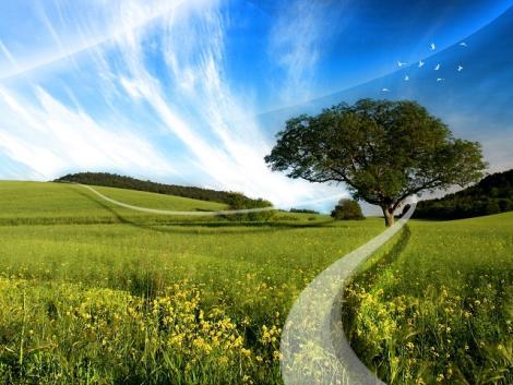 camino-al-cielo