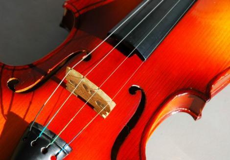 violin_Custom_